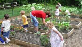 Дали одгледувањето храна треба да биде дел од образовниот систем на децата?