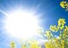 Денес сончево време со температура до 20 степени