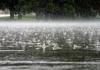 Уживајте во сонцето: Метеоролозите најавуваат магла и обилни врнежи